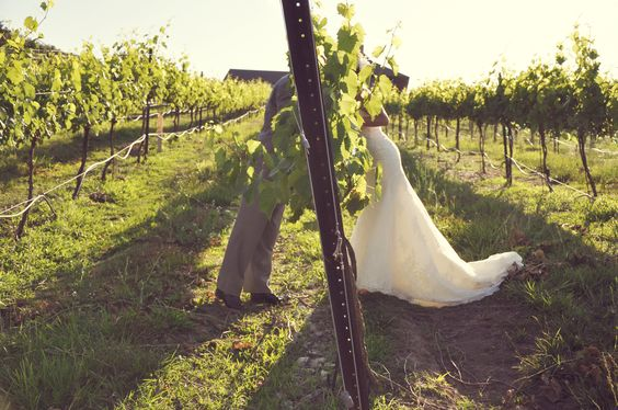 winery venues